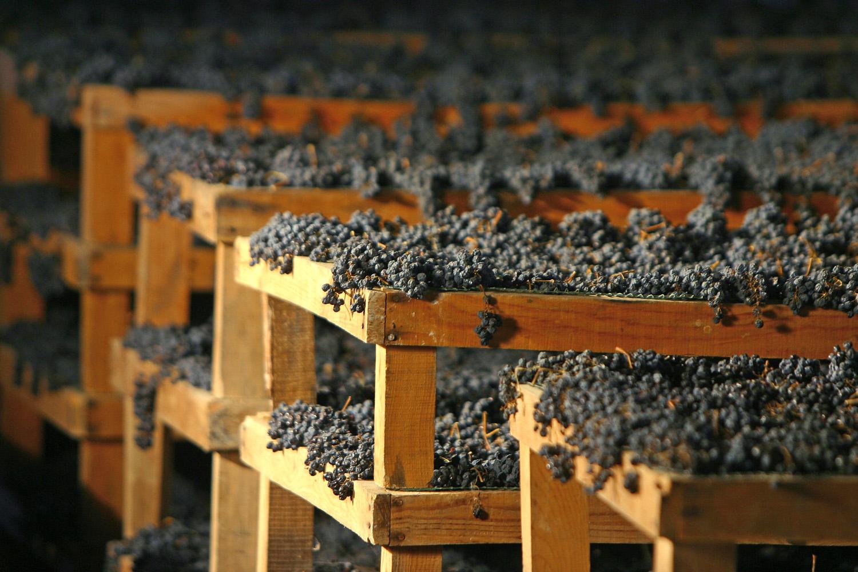 villa mattielli veinid 2